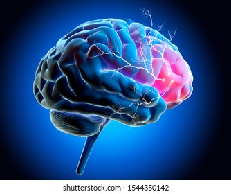 Human Brain with Activity - medical 3D illustration