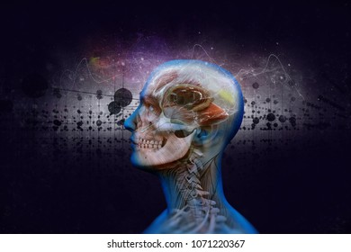 Human brain and its capabilities. Conceptual vision.3D illustrat