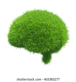 Human brain is covered with green grass isolated on white background