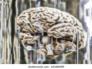 Human brain, detail of a human organ, intelligence and thought