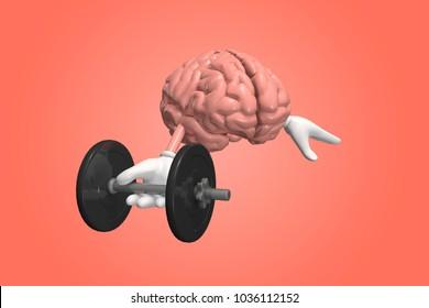 Human brain exercising with dumbbell. Brain training memory concept. 3D Illustration.