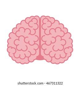 Human brain isolated on white background. Flat design