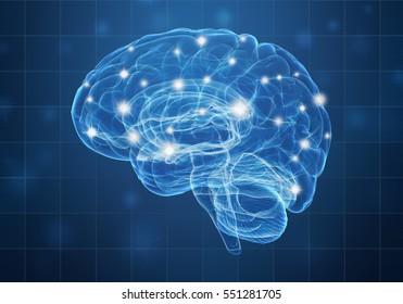A human brain on blue background. 3D illustration