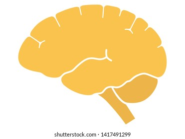 Human brain in profile view left.  Flat design