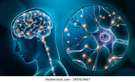Human brain stimulation or activity with neuron close-up 3D rendering illustration. Neurology, cognition, neuronal network, psychology, neuroscience scientific concepts.