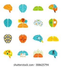 Human brain thinking intelligence memory strategy colored icons flat set isolated  illustration