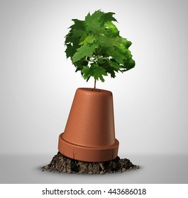 Human determination psychology concept and the power of perseverance as a sapling tree shaped as a head growing out of an upsidedown flower pot as a symbol for recovery with 3D illustration elements.