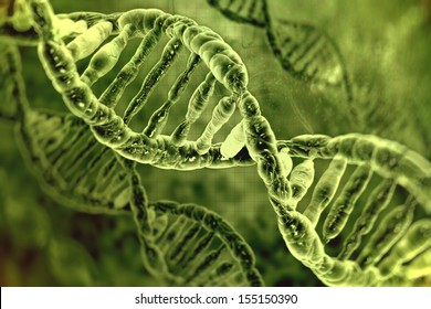 human DNA strand on the green background