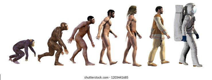 human evolution, from ape to space, 3d illustration