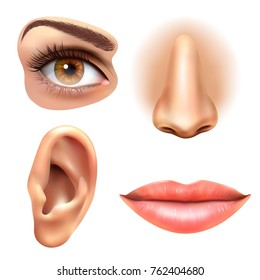 Human face parts 4 sense organs icons square collection of eye nose mouth and ear realistic  illustration