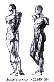 human figure, the construction of the figure
