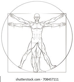 A human figure like Leonard Da Vinci s Vitruvian man anatomy illustration