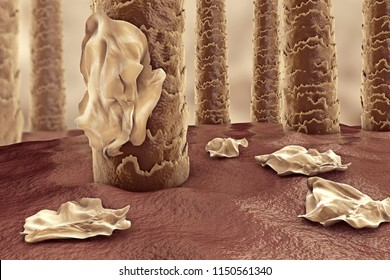 Human hairs with dandruff, close-up view, 3D illustration