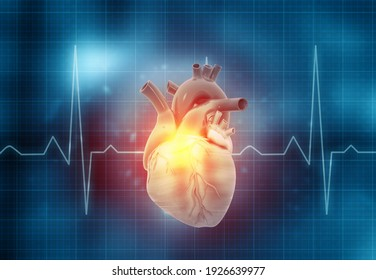 Human heart with ecg graph. 3d illustration