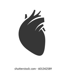 Human Heart Icon on White Background.