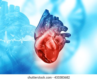 Human heart on abstract background