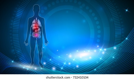 Human internal organs anatomy colorful detailed illustration on an abstract blue background with glow