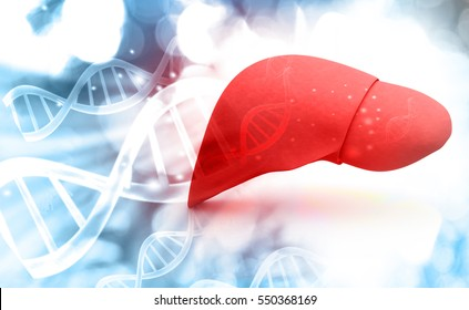 Human liver anatomy with DNA structure, 3d render. 3d render