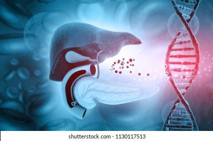 Human liver and  dna on medical background. 3d illustration