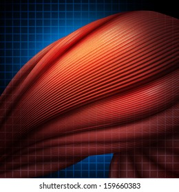 Human muscle pain or myalgia illness as a medial health care concept as a three dimensional anatomical muscle fibers with a highlighted area of aching discomfort as an icon of chronic sports injury.