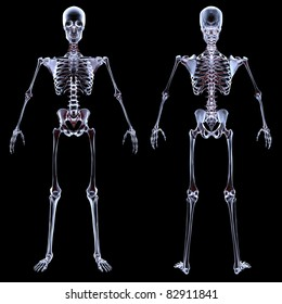 human skeleton under the X-rays. isolated on black.