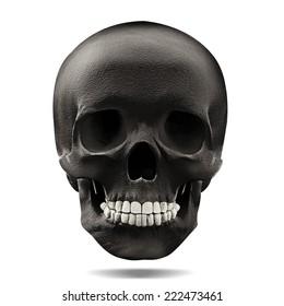 human skull black with white background
