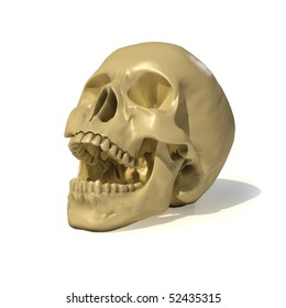 human skull. with clipping path