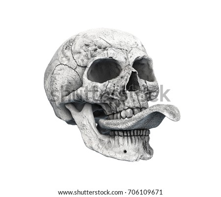 06c5610d8c Royalty Free Stock Illustration of Human Skull On Rich Colors White ...