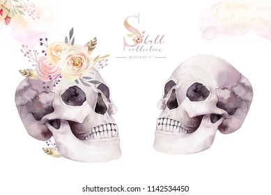 Human watercolor skull with floral bouquets. Head vintage helloween illustration. Retro tattoo death design retro drawing