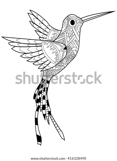 Hummingbird Coloring Book Adults Raster Illustration ...