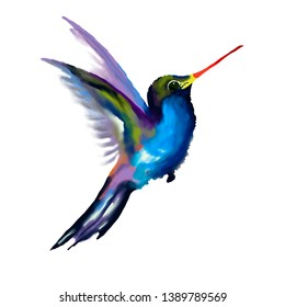 Hummingbird - Golden closed sapphire. Hand drawn illustration of a flying Golden Tailed Sapphire hummingbird with colorful glossy plumage on a white background