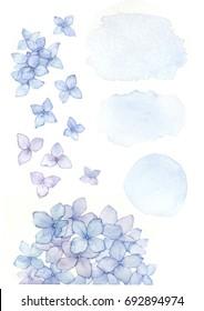 hydrangea watercolor set