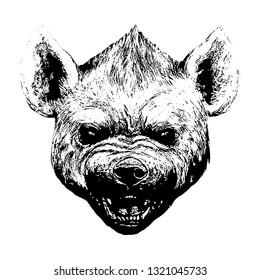 Hyena portrait. Hyena roaring illustration.