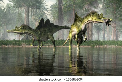 Ichthyovenator was a dinosaur of the early Cretaceous. It was a spinosaurid with an unusual split sail. It was semiaquatic and ate fish.  Here two of them catch fish in a swamp. 3D Rendering
