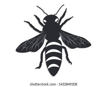 Icon - Black bee on white background - flat style