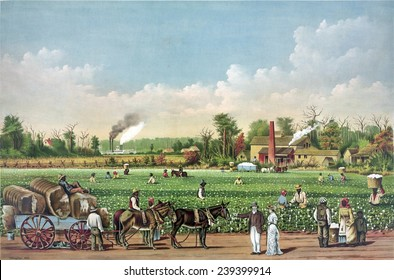 Idealized view of cotton plantation on the Mississippi River, with African American workers. Evocative of Southern antebellum era of pre-Civil War prosperity and slavery. Color lithograph, 1884