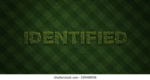 IDENTIFIED - fresh Grass letters with flowers and dandelions - 3D rendered royalty free stock image. Can be used for online banner ads and direct mailers.