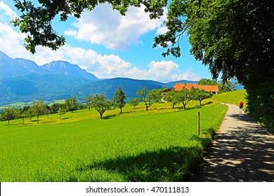 Idyllic countryside in Bavaria, Germany. The alps and a mountain pasture. Near Ainring, Berchtesgadener Land. Oil painting effect.