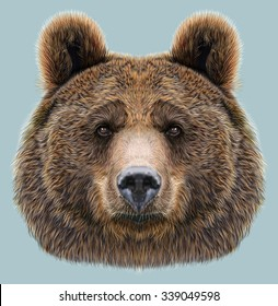 Illustrated Portrait of Bear on blue background. The head of an adult brown bear