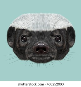 Illustrated portrait of Honey badger. Cute face of ratel on blue background.