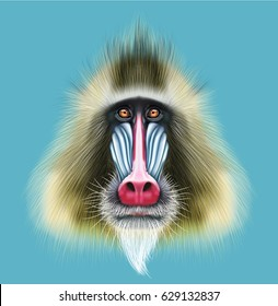 Illustrated portrait of Mandrill monkey. Cute fluffy face of primate on blue background.