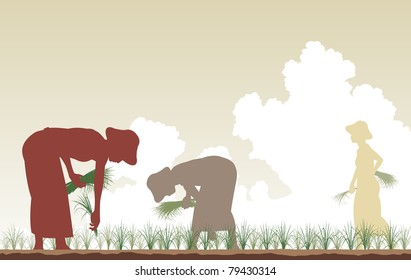 Illustrated silhouettes of women planting rice in a paddy field