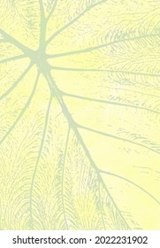 An illustrated tropical leaf detail in light gray, greens and yellows.