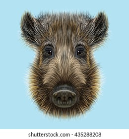 Illustrated of Wild boar.  Formidable face of wild pig on blue background.