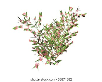 Illustration of a 3D honeysuckle with blooms