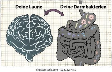 Illustration about Darmbakterien und Laune