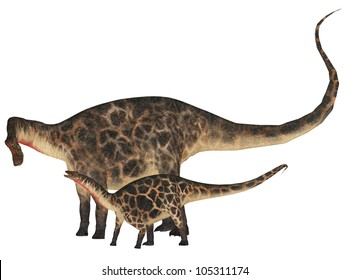 Illustration of an adult and a young Dicraeosaurus (dinosaur species) isolated on a white background