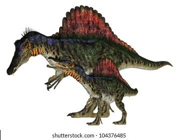 Illustration of an adult and a young Spinosaurus (dinosaur species) isolated on a white background