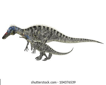 Illustration of an adult and a young Suchomimus (dinosaur species) isolated on a white background