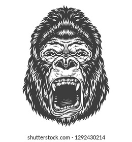 illustration, angry gorilla head on a white background